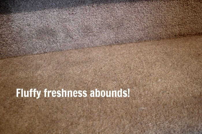 My Carpet After A Good Diy Cleaning Session No More Stubborn Stains
